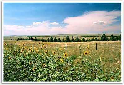 On the high plains, somewhere east of Colorado Springs